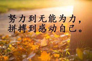 广州师德皓大教育科技有限公司怎么样?我们要继续学习吗?